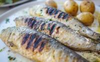 根据专家的说法最好的烤鱼